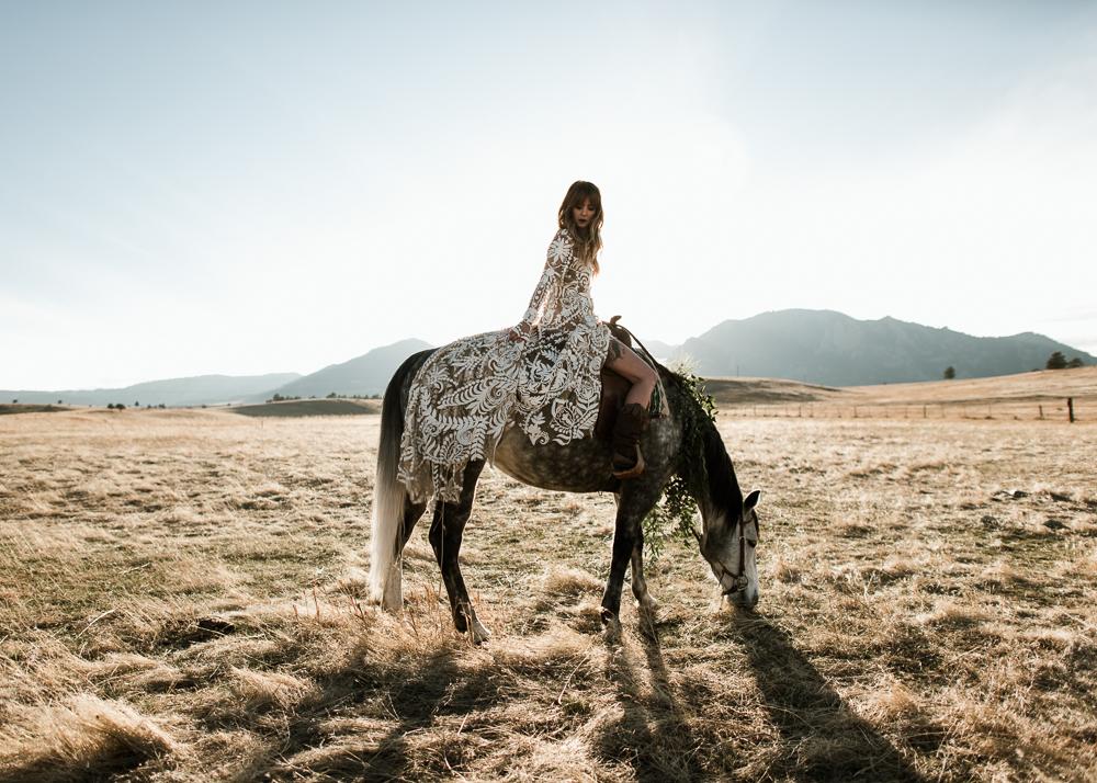 HorseShoot-25.jpg