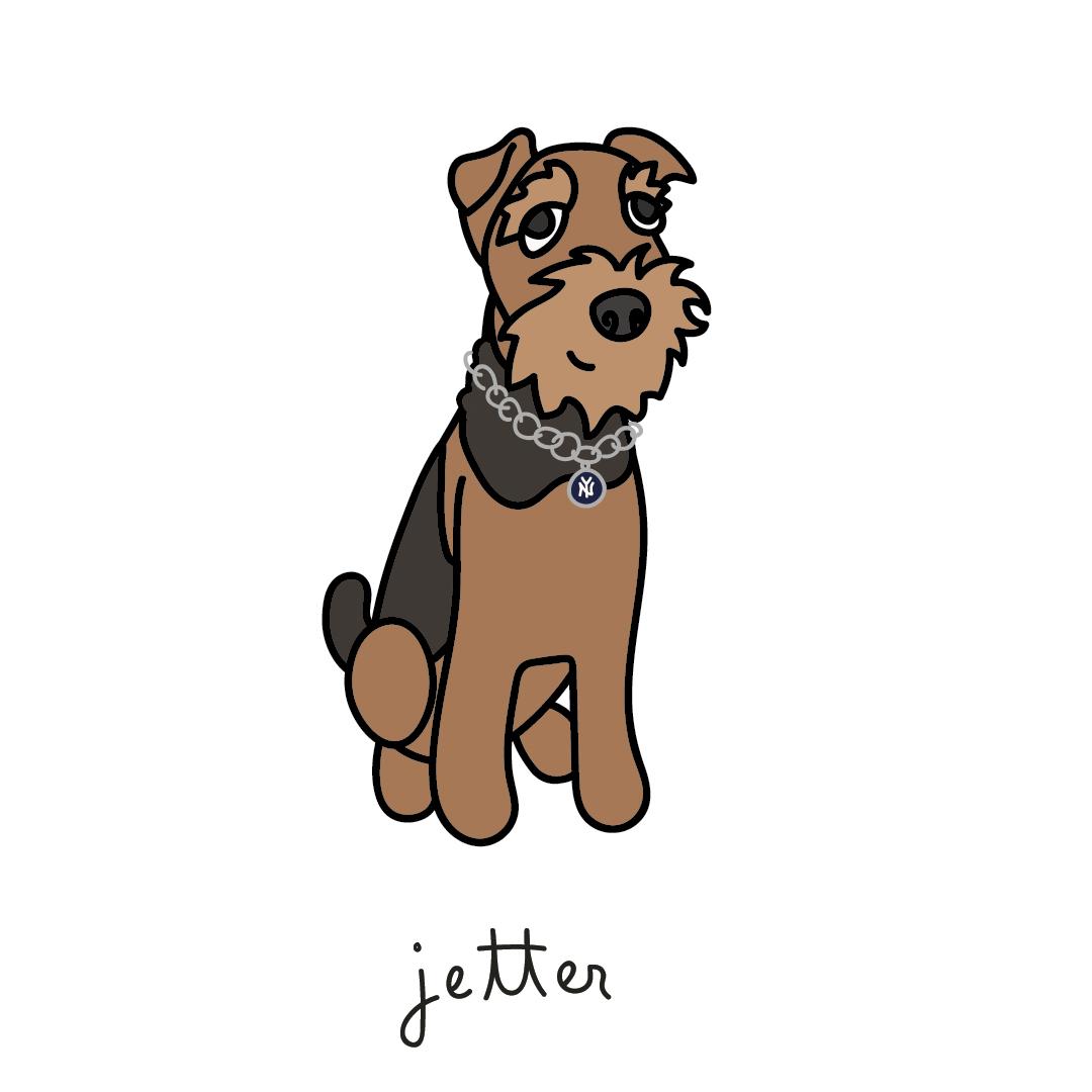 jetter.jpg