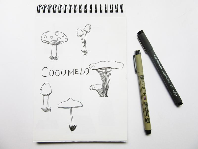 10-desenho-cogumelo