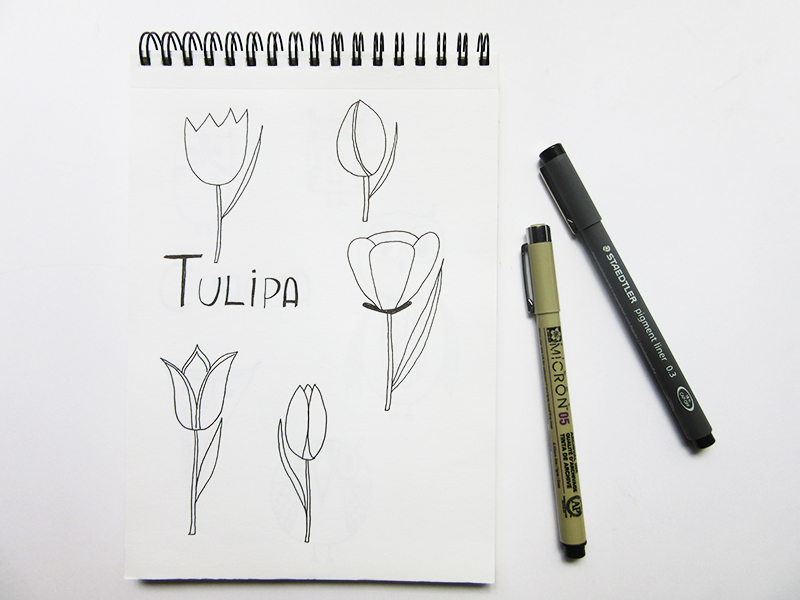 12-desenho-tulipa