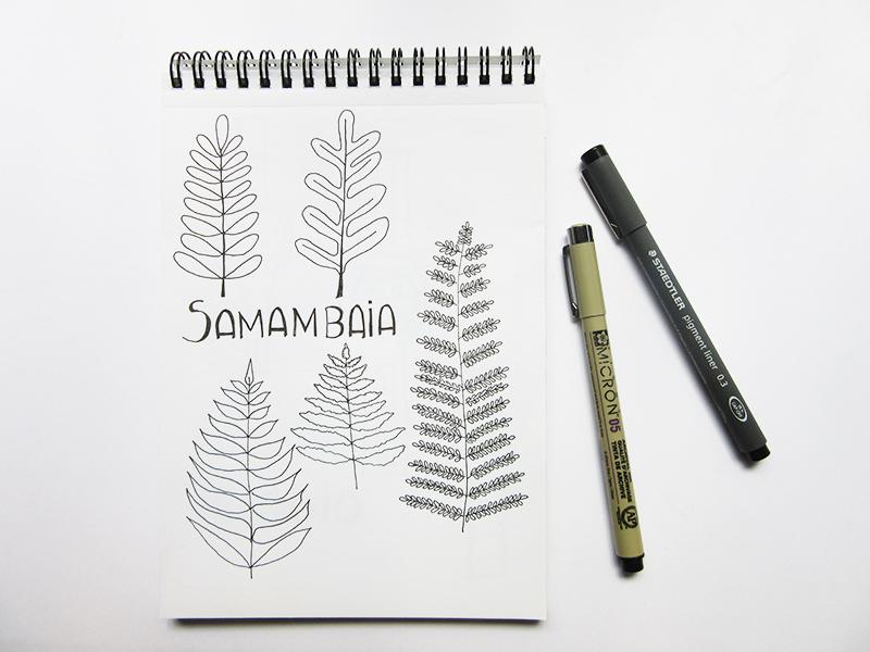 14-desenho-samambaia