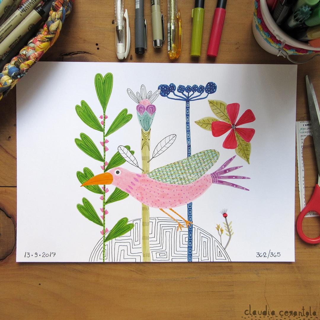 claudia-cerantola-araucaria-362.jpg
