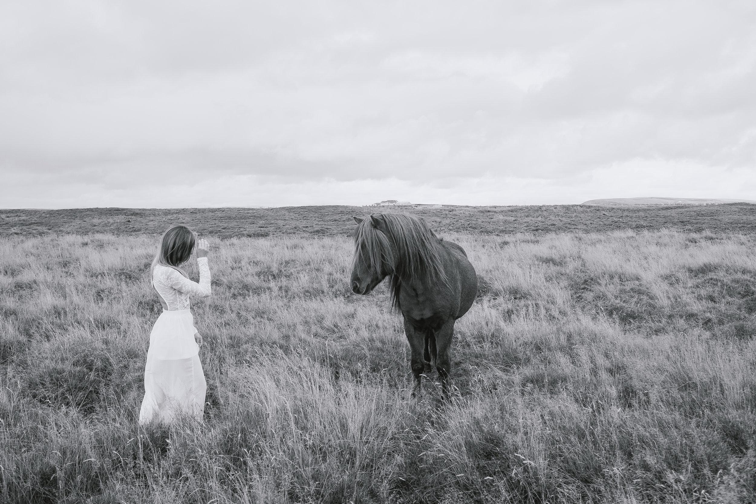 Iceland-69.jpg