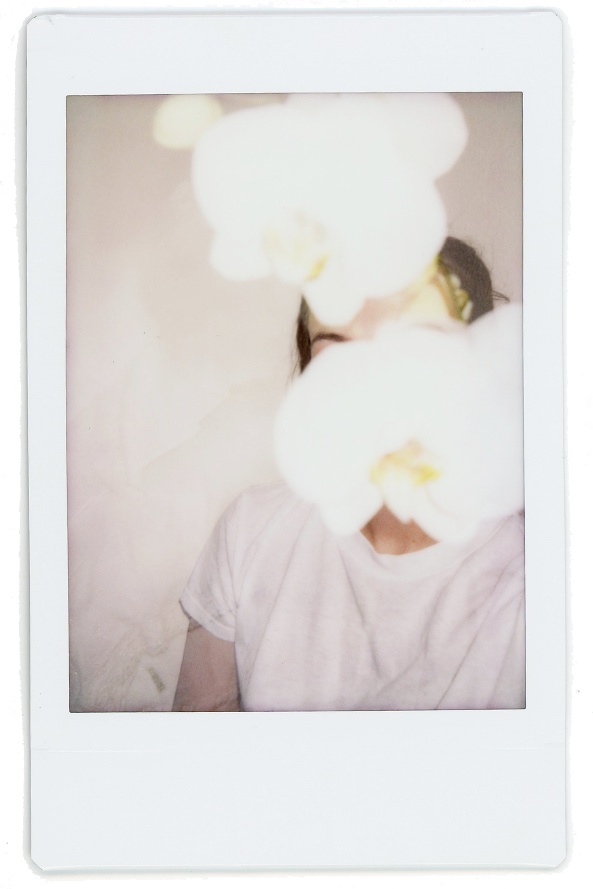 polaroids // portrait 3