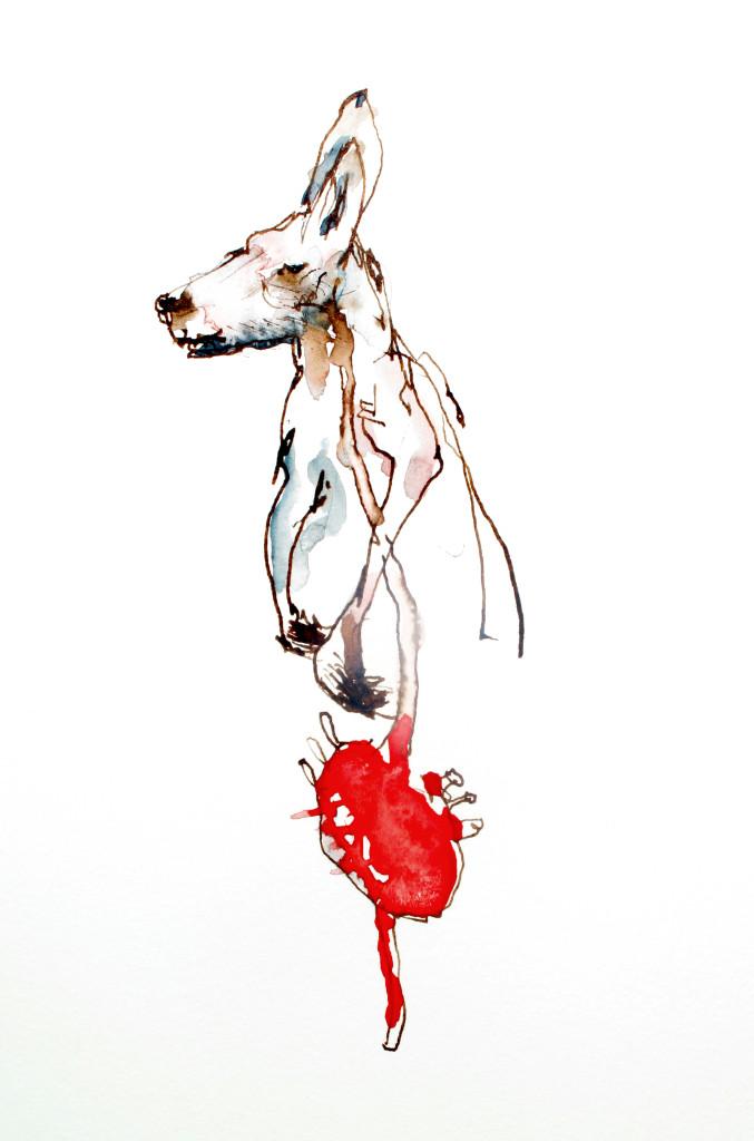 martin-hodge-kangaroo-heart.jpg