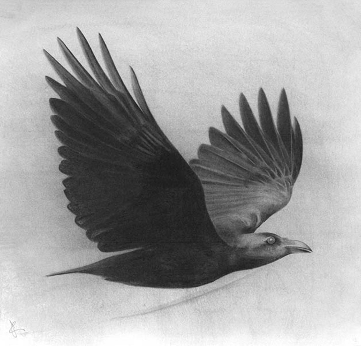 adam-cusack_flight_2.jpg