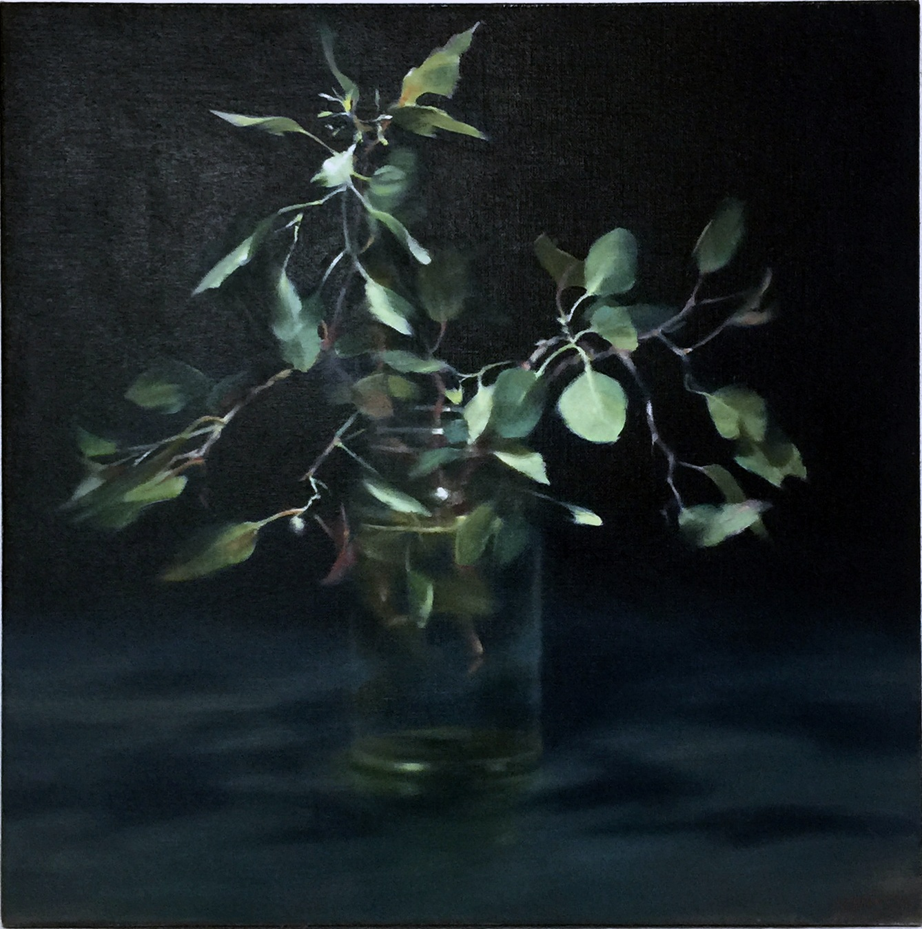 HILARY JACKMAN  Leaves in a Jar , 2019 oil on linen 62 x 62 cm