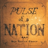 PulseOfANationcover.jpg