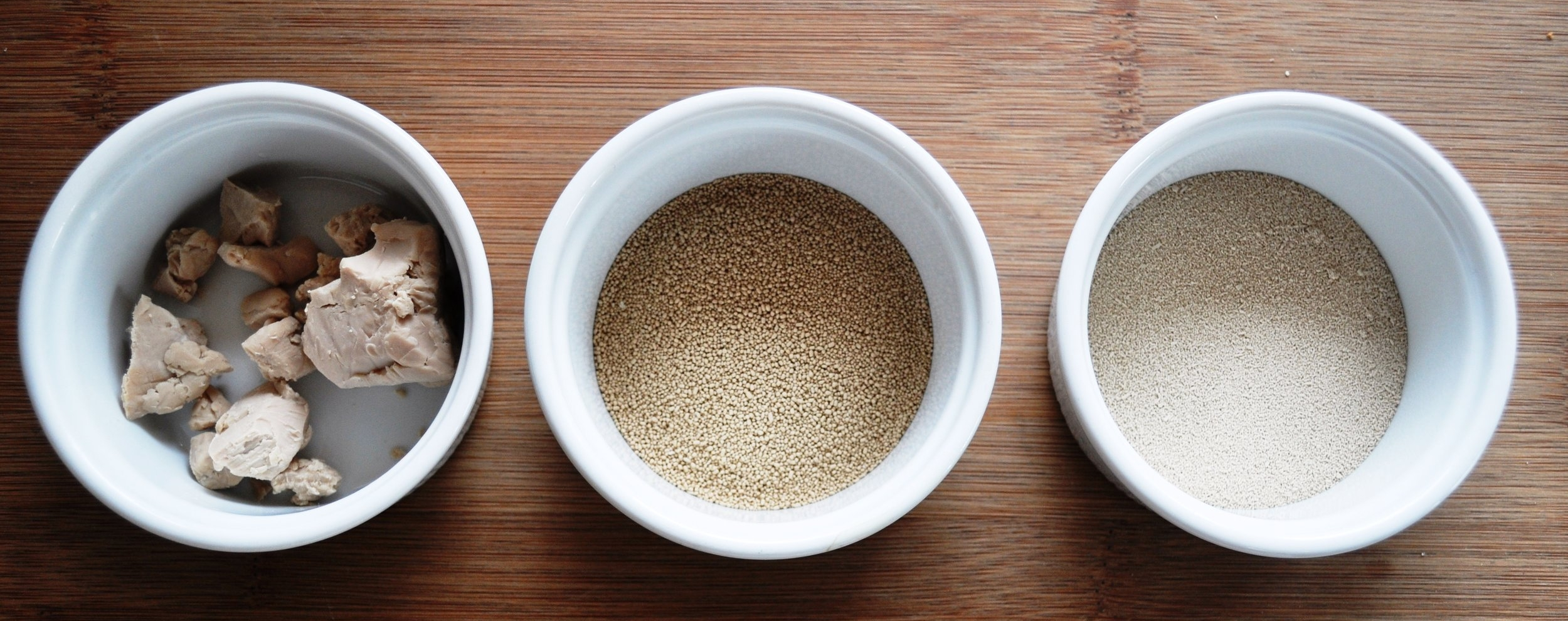 Baking Basics Yeast