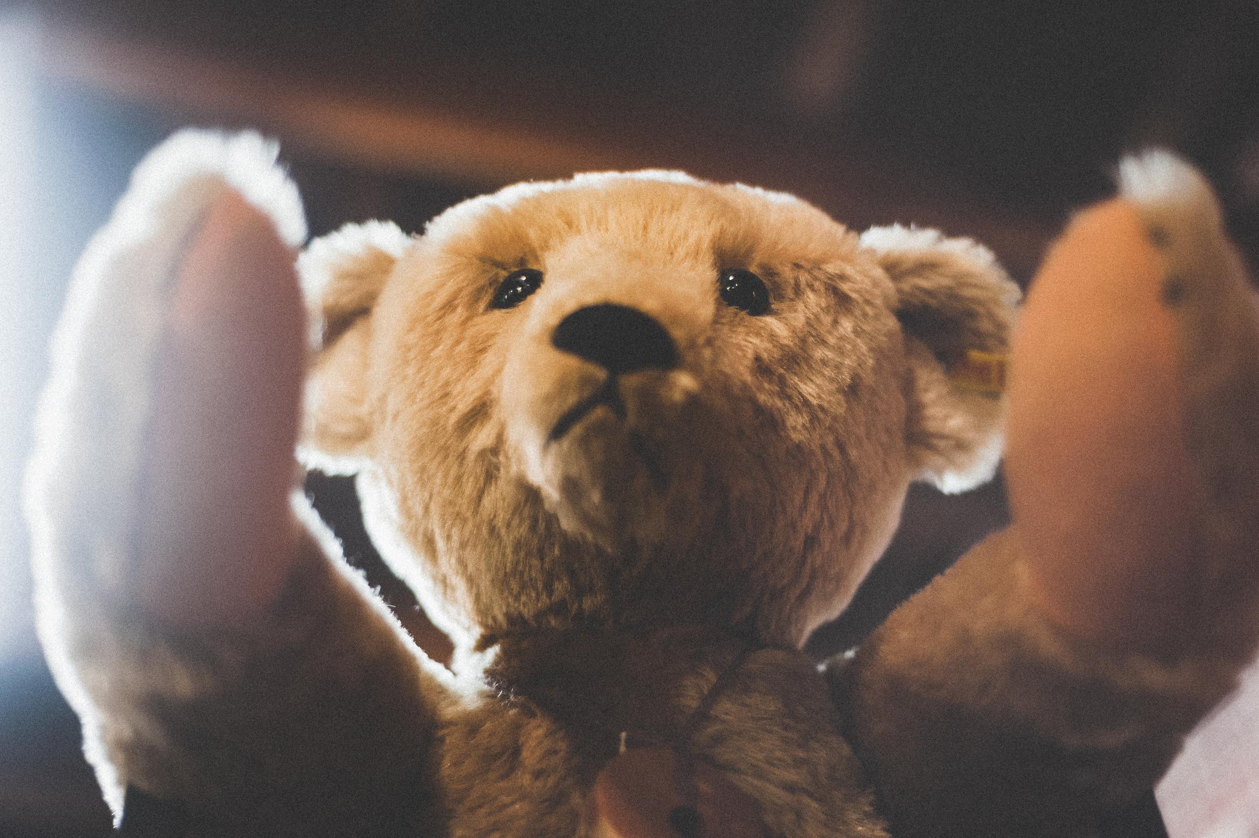 A slightly disturbing, cuddly bear.