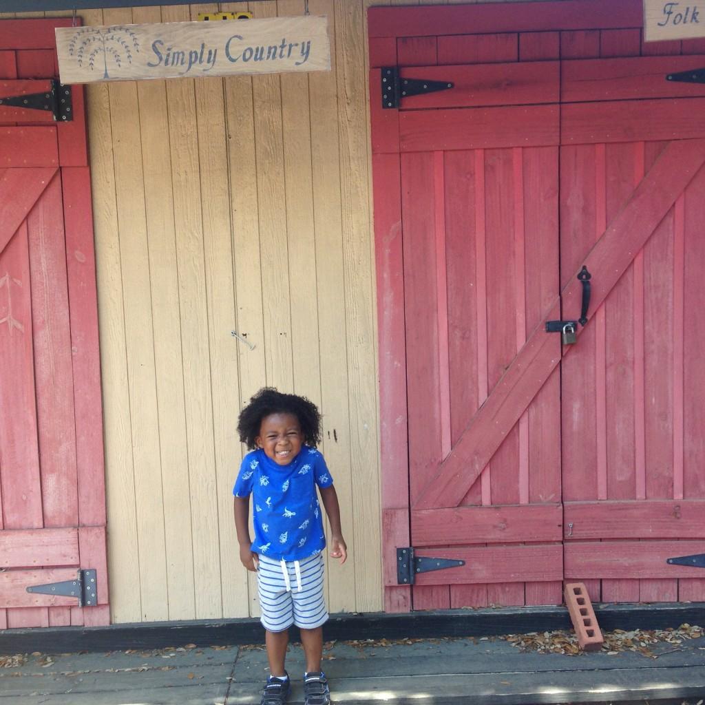 Little Sir in Wimberley, tX