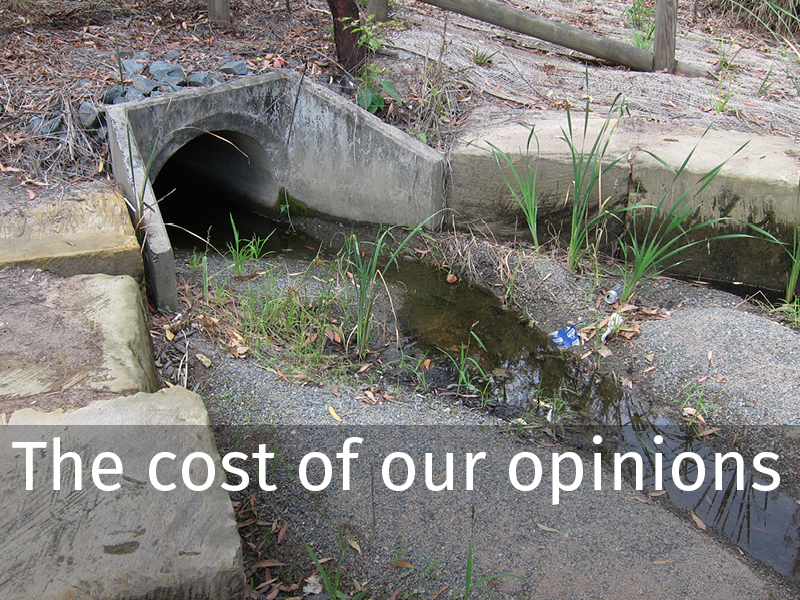 Article 0001 The cost of our opinions.jpg