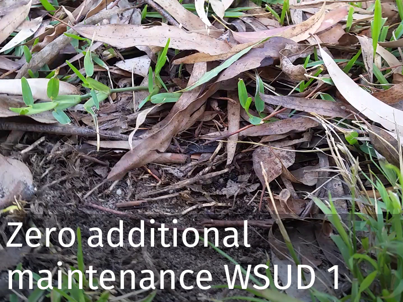 20150102 0043 Zero additional maintenance WSUD 1.jpg