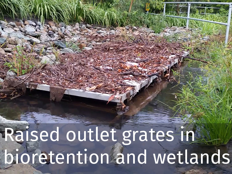 20150102 0056 Raised outlet grates in bioretention and wetlands.jpg