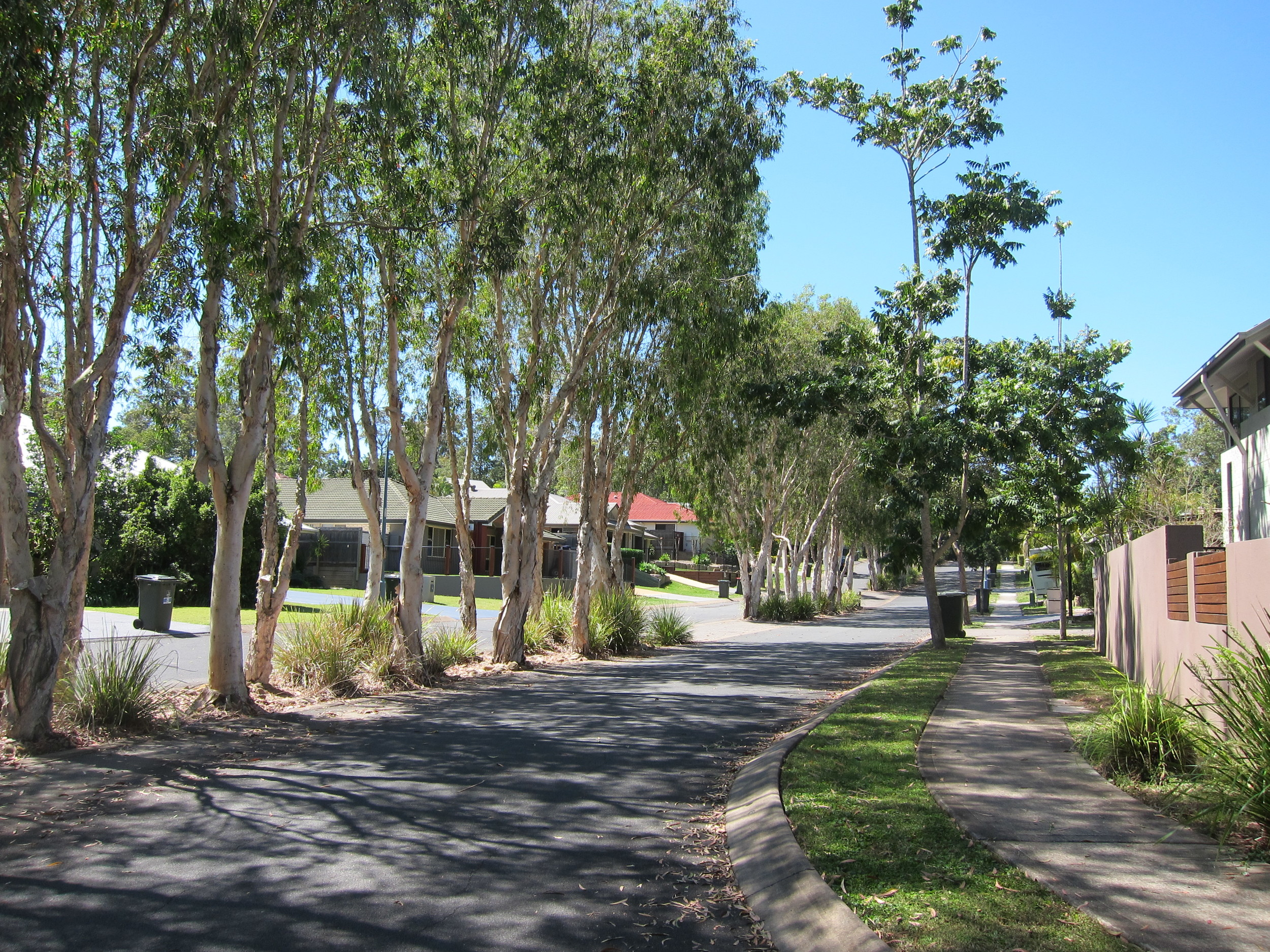 Jacksonia Drive Bioretention System