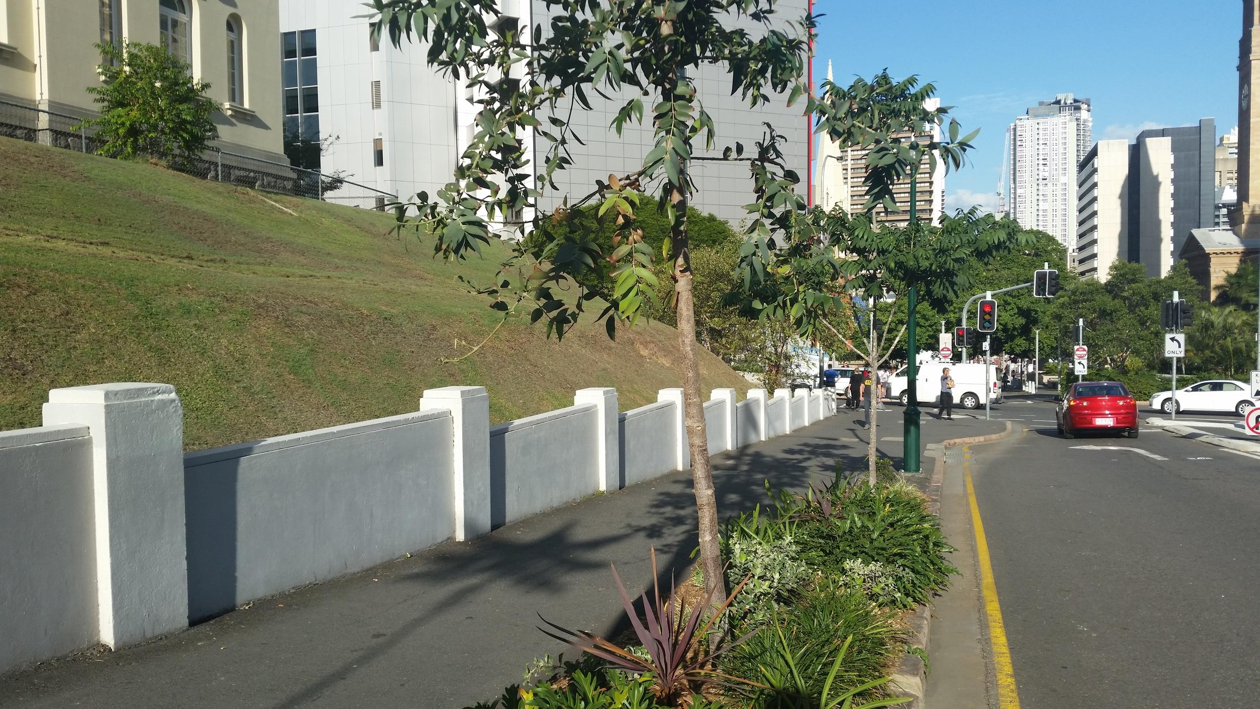 Albert Street Self-Watering Street Tree