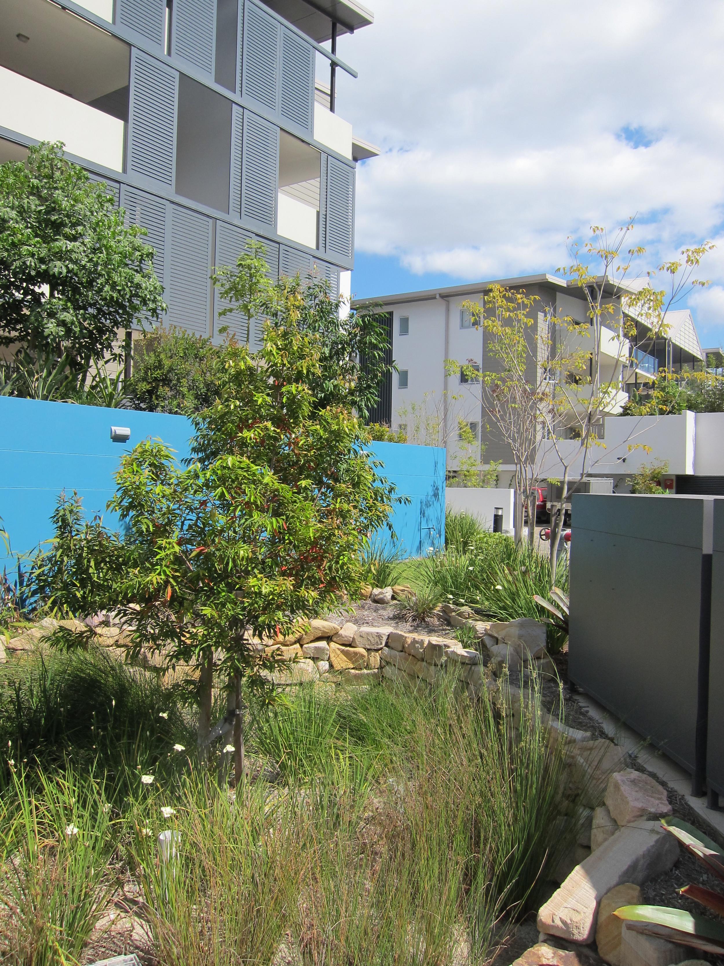 Annerley Road Bioretention System