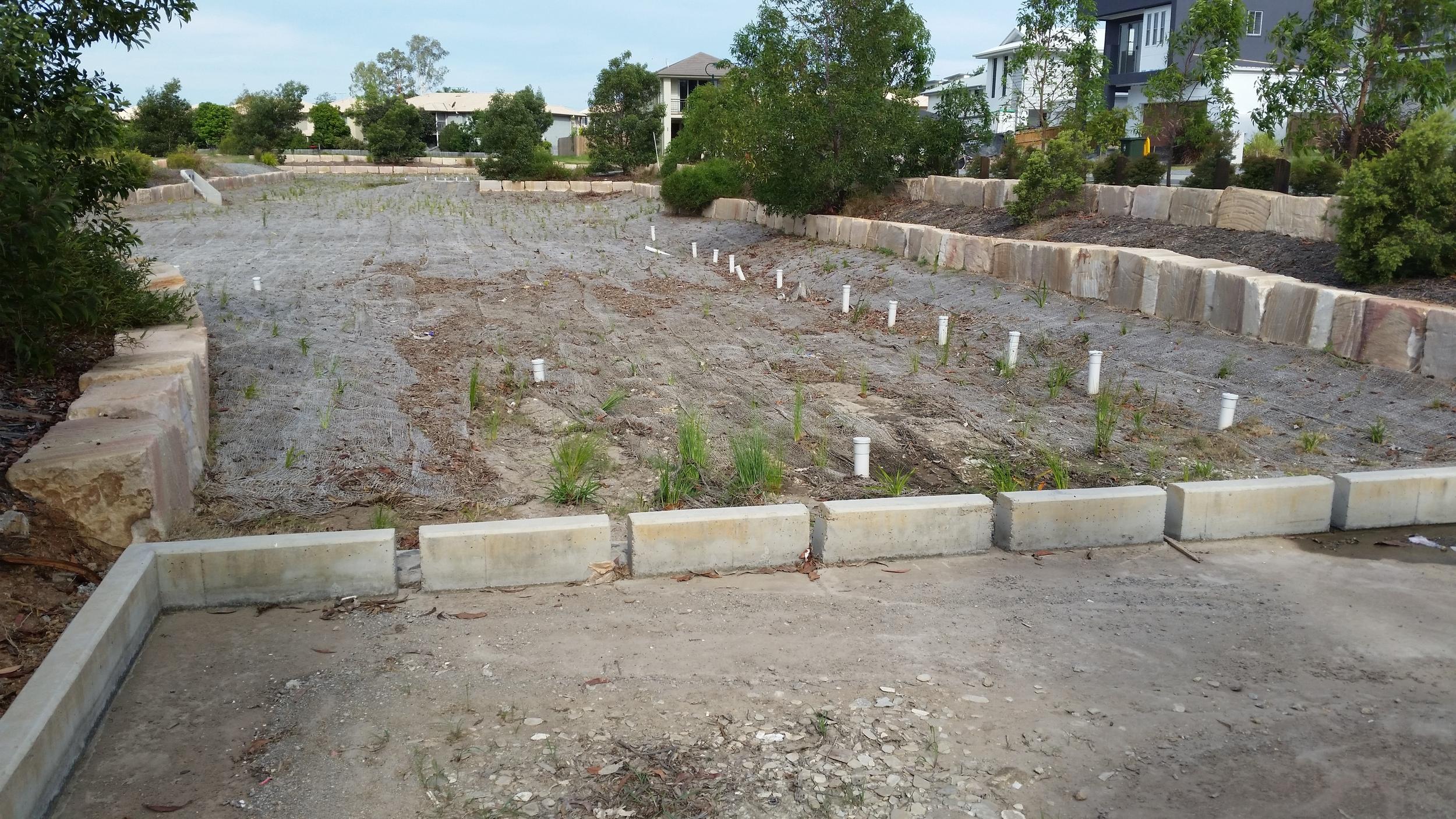 Finnegan Circuit Bioretention System