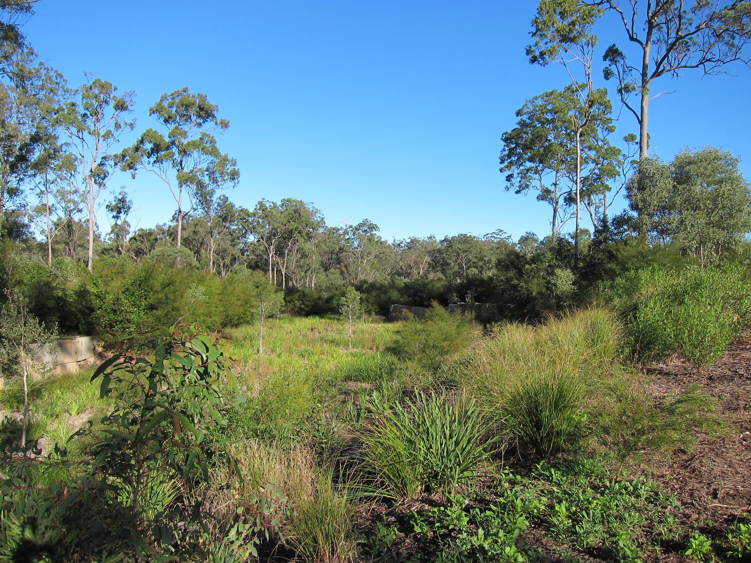 Bignonia Close Bioretention System