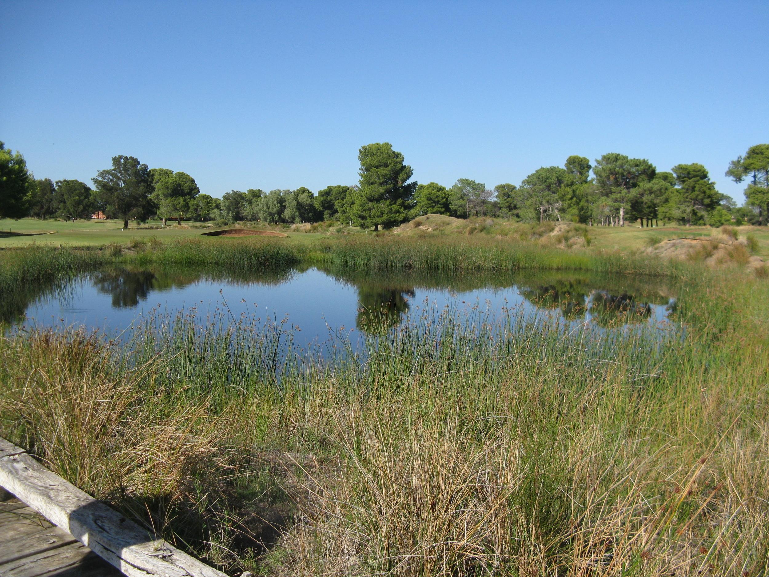 Glenelg Golf Course Stormwater Harvesting Wetland
