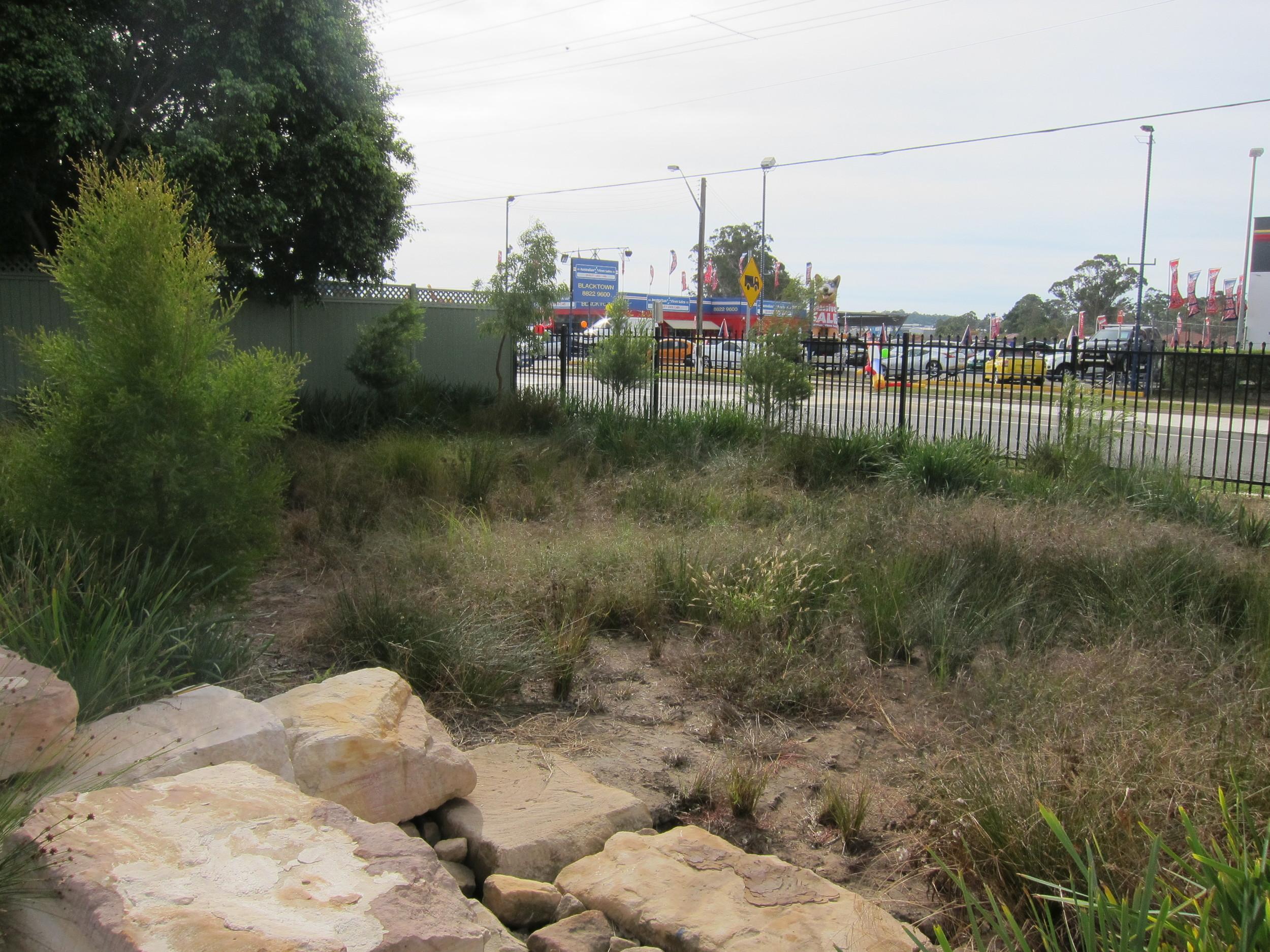 Blacktown Showgrounds Bioretention System