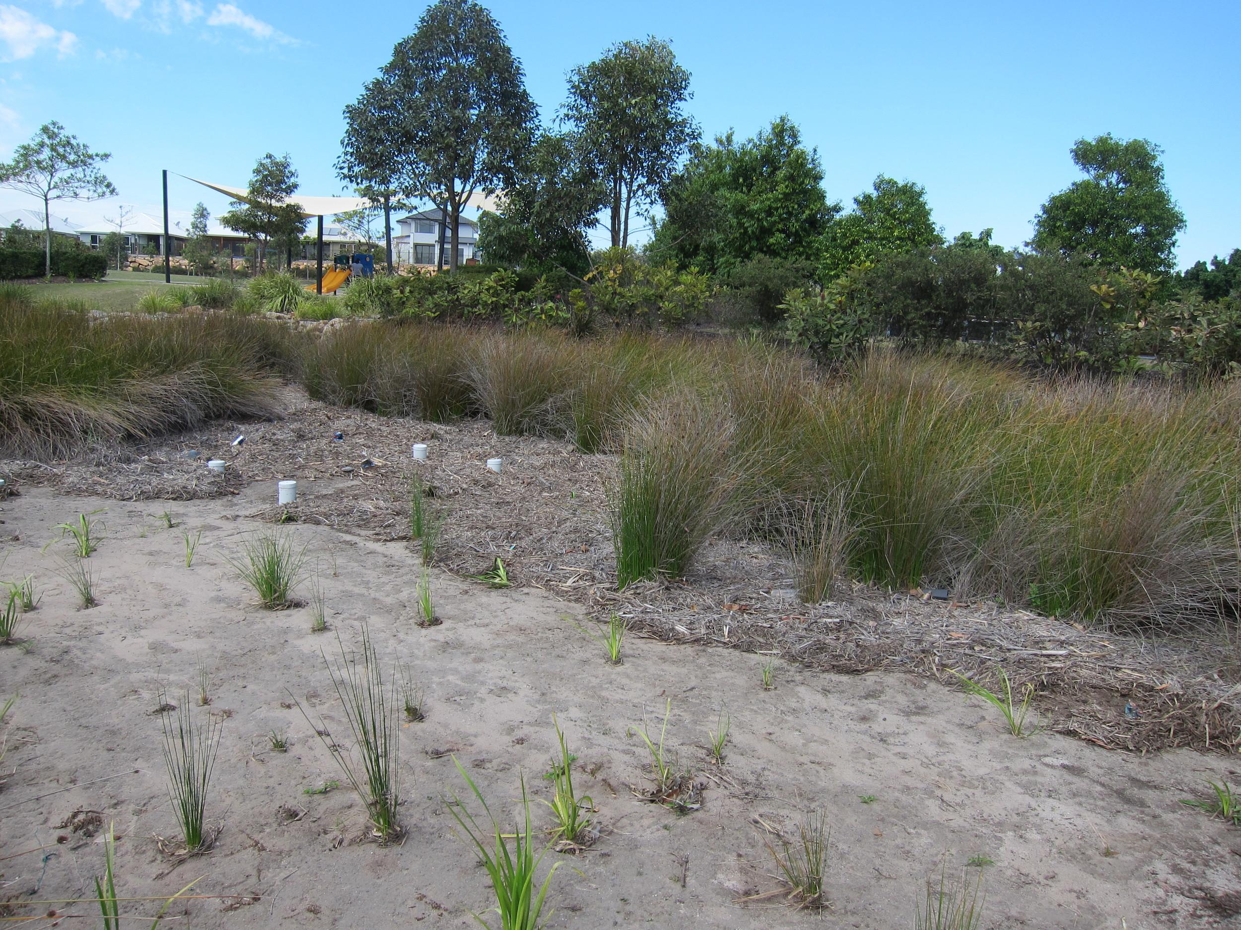 Fairway Chase Bioretention System
