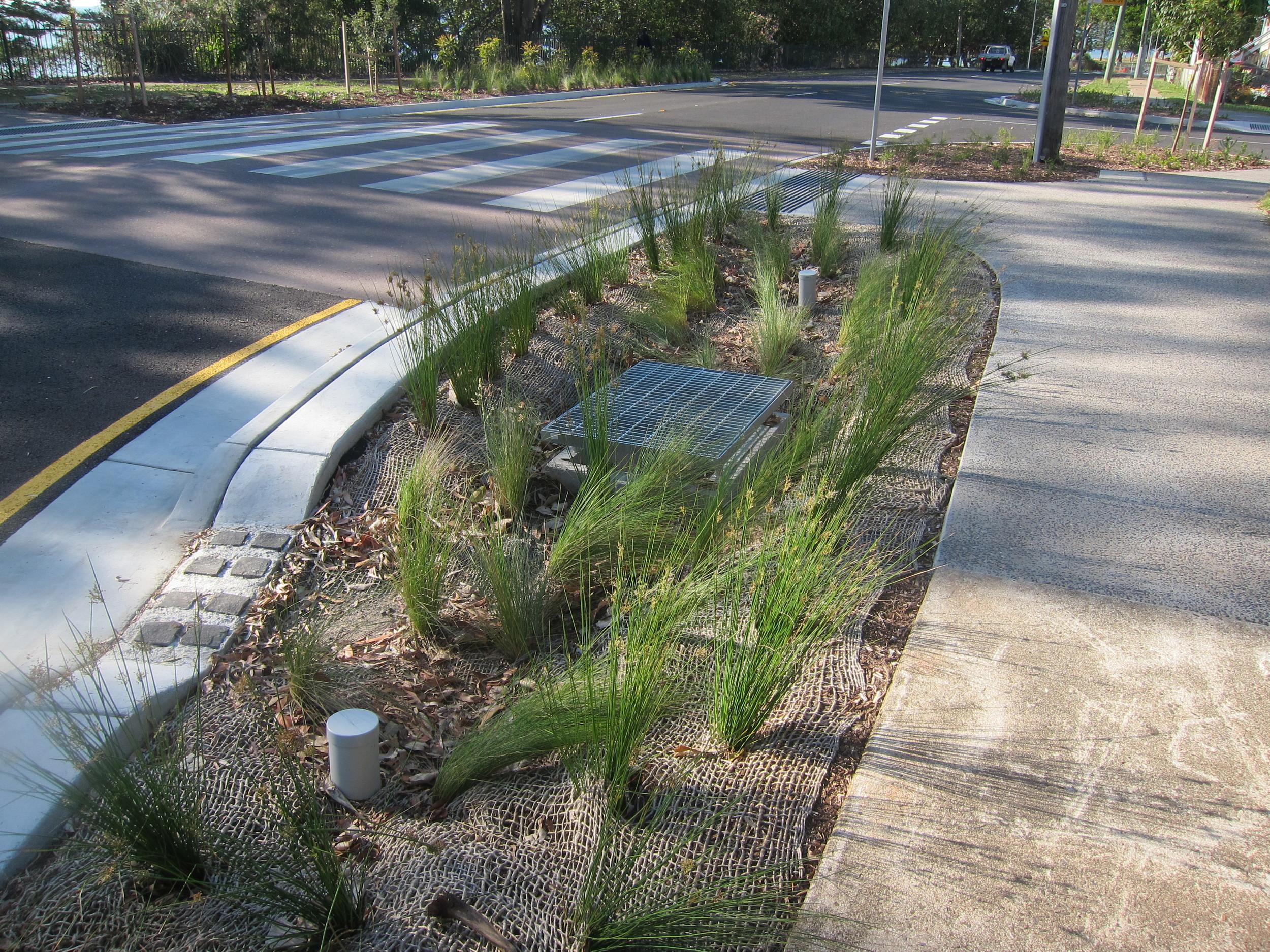 Redcliffe Bioretention System
