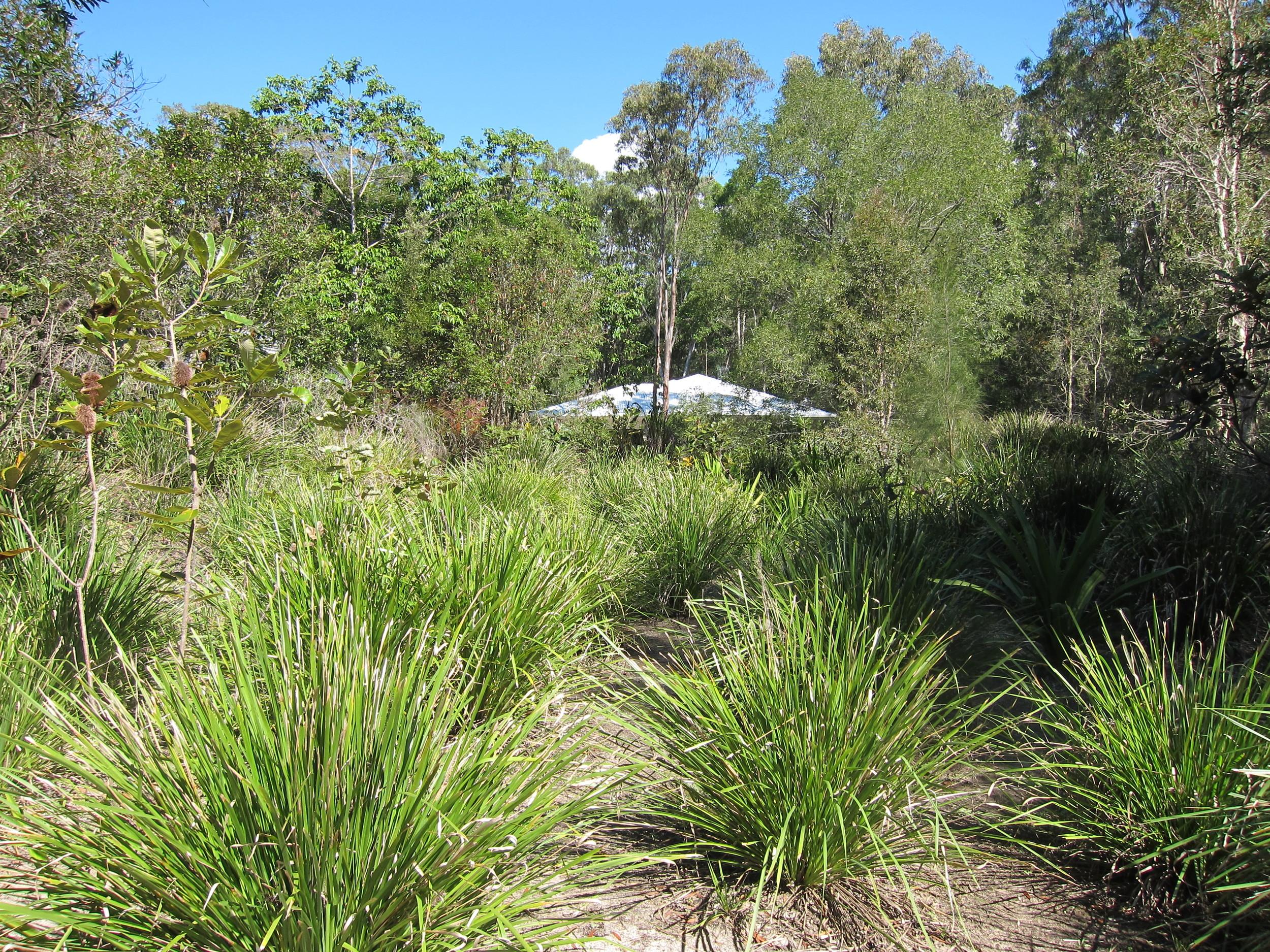 Moorhen Place Bioretention System