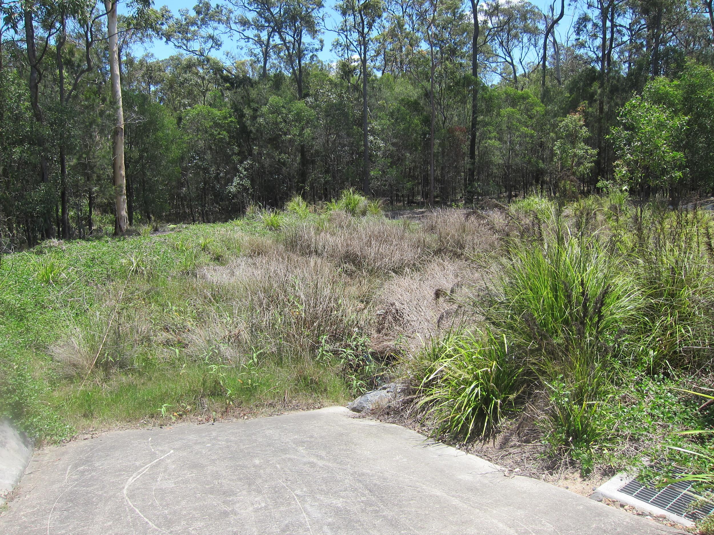 Woodvale St Bioretention System
