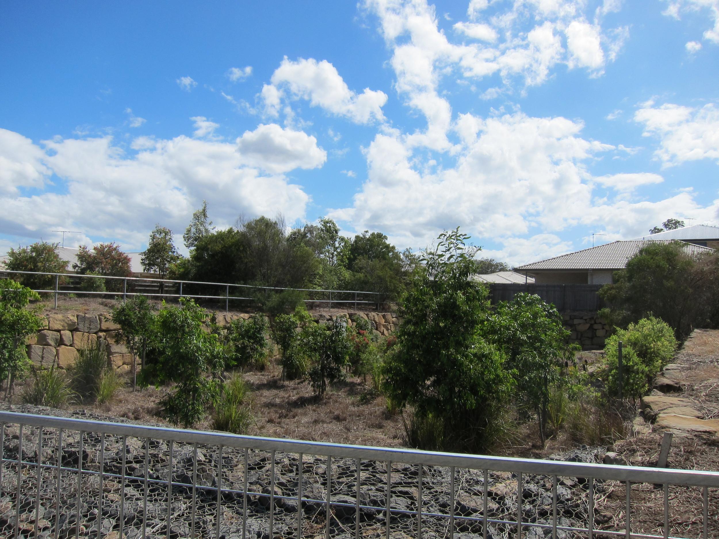 Demeio Road Bioretention System