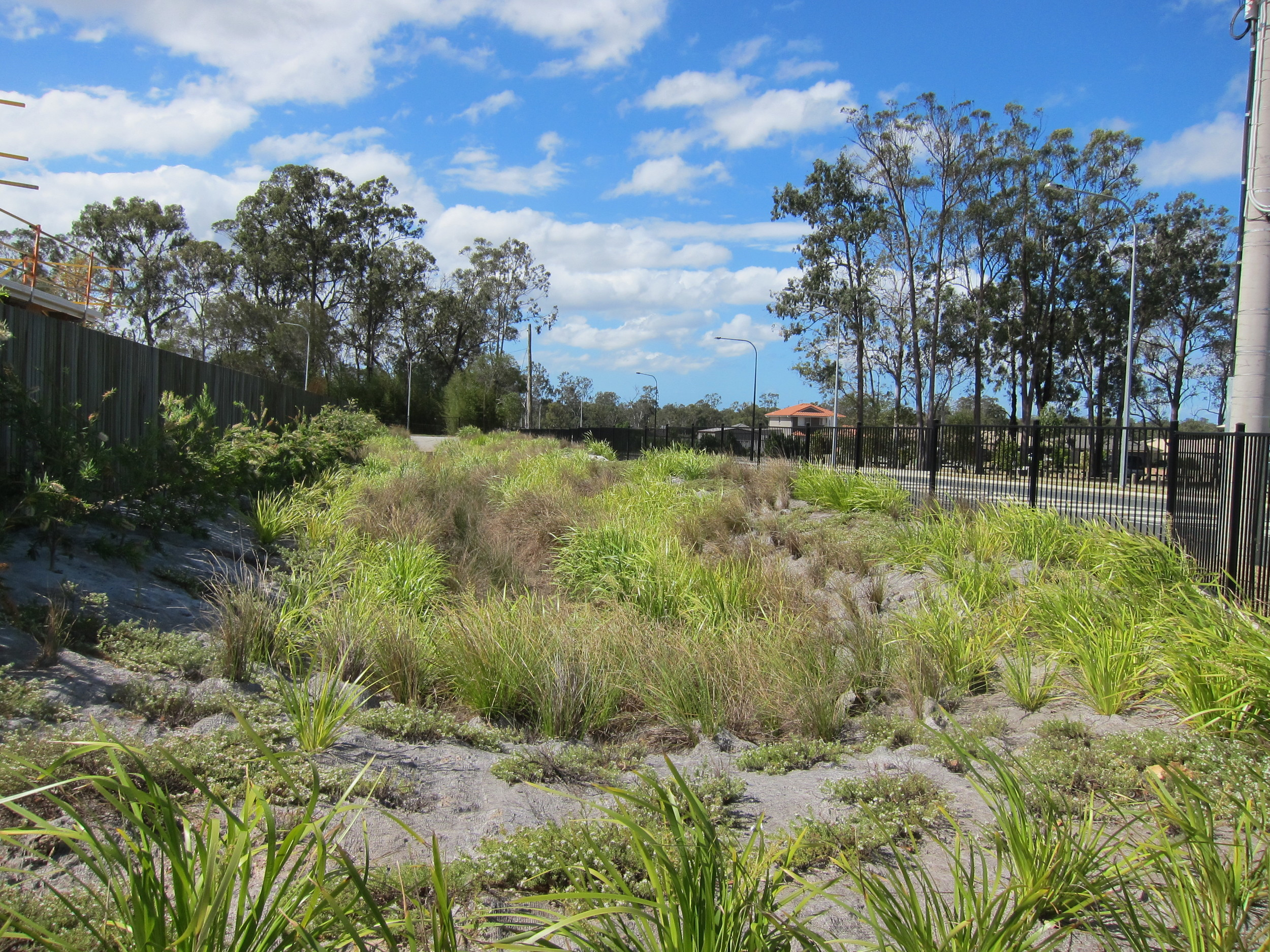 Kristy St Bioretention System