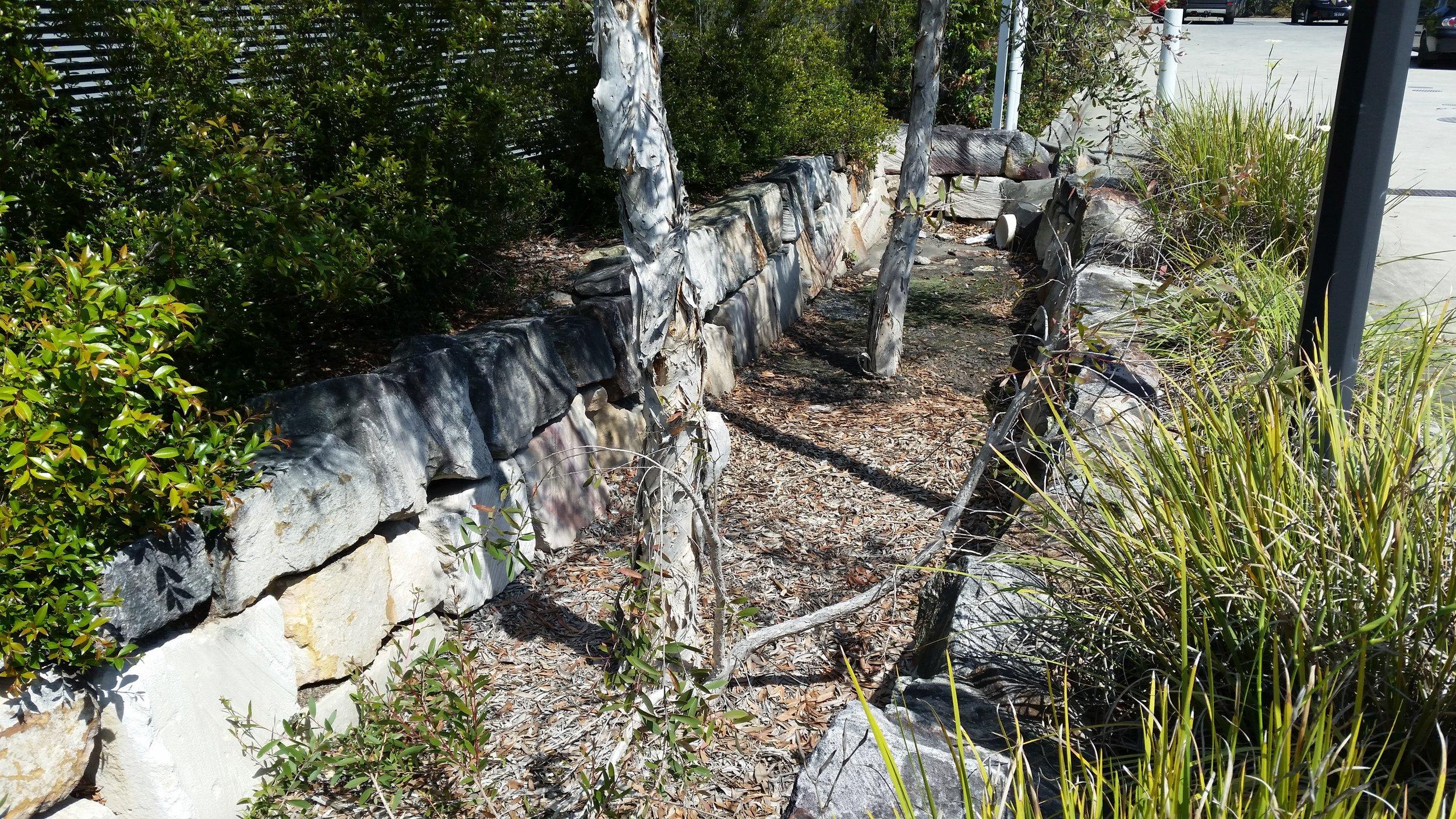 Augustine Heights Caltex Bioretention System 1
