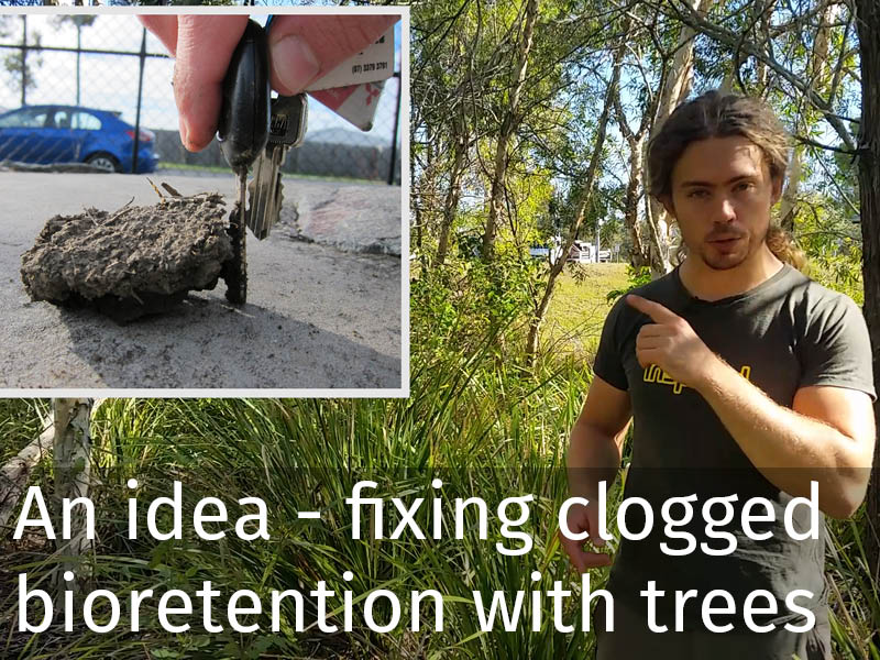 20150102 0109 An idea - fixing clogged bioretention with trees and plants.jpg