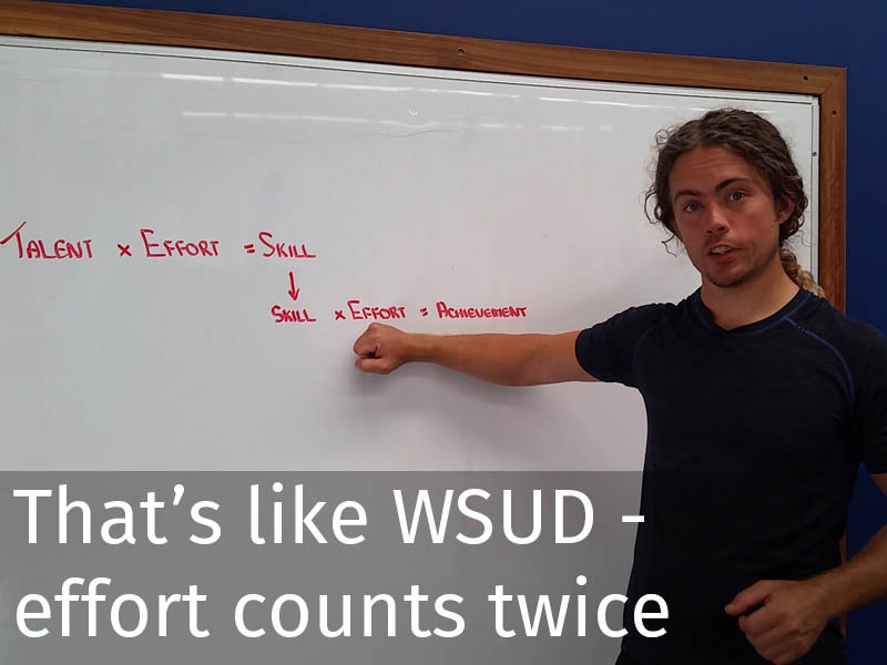 20150102 0118 That's like WSUD - Effort counts twice.jpg