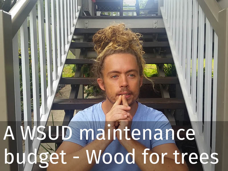 20150102 0133 Obtaining a WSUD maintenance budget - The wood for the trees.jpg