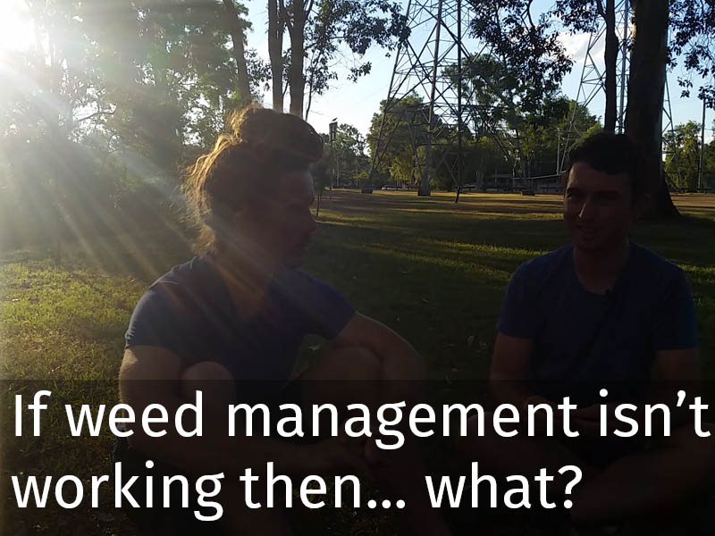 20150102 0151 If weed management isn't working then... what.jpg