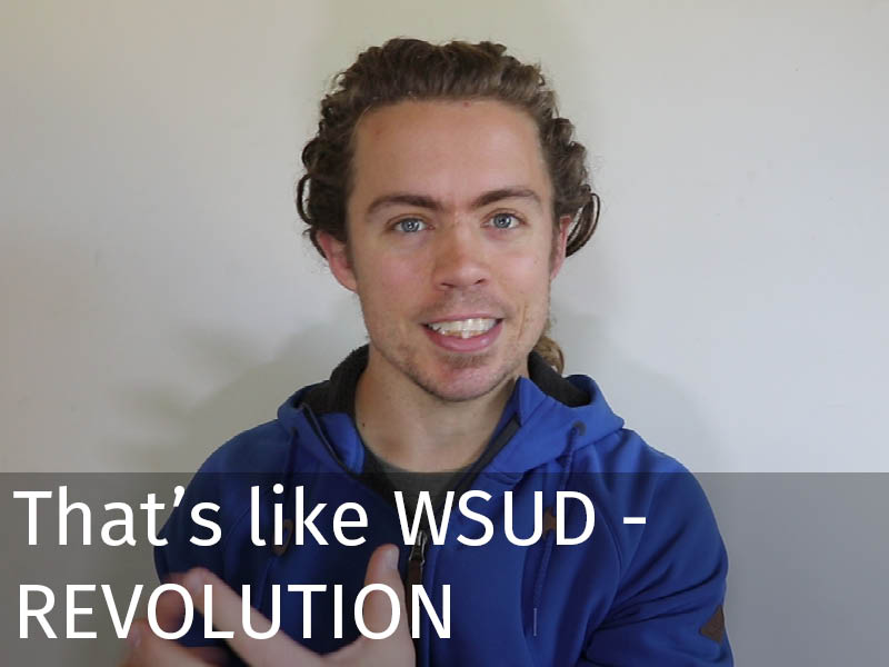 20150102 0190 That's like WSUD - REVOLUTION.jpg