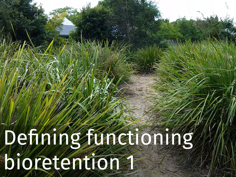 20150102 0010 Defining functioning bioretention 1.jpg