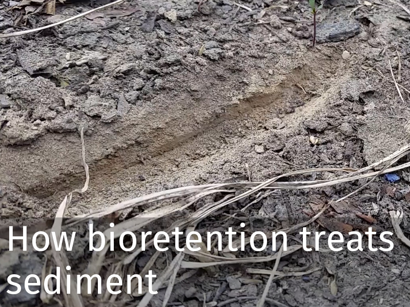 20150102 0011 Bioretention treats sediment.jpg