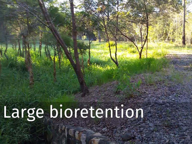 20150102 0004 Large bioretention.jpg
