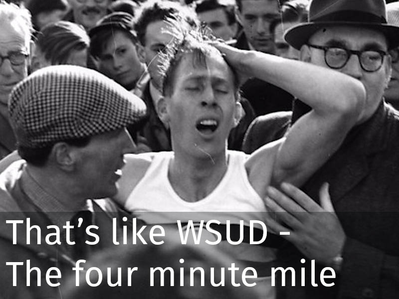 20150102 0276 That's like WSUD - The four minute mile.jpg