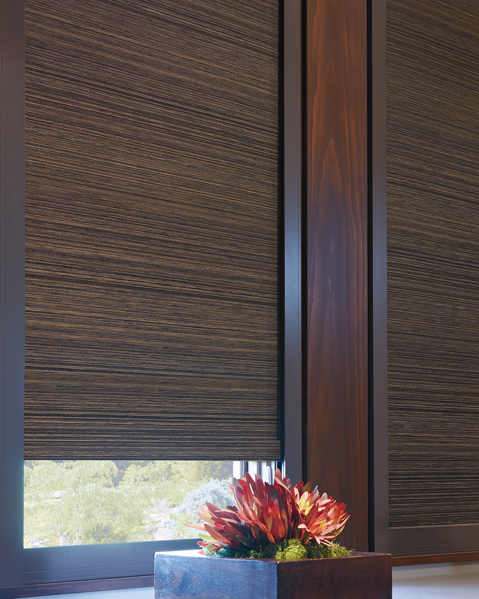 Roller Shades, Screen, and Cellular for Homes Near Carlsbad, California (CA) with Horizontal and Vertical
