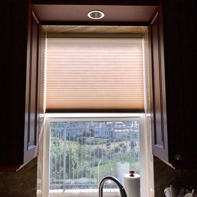 Looks like we are sticking with Duette® Honeycomb Shades this week! 💁‍♀️This photo was taken at one of our client's homes. She has intense sun ☀️and heat 🔥 coming into her home in the afternoon and needed something to block that heat. These Duette® Honeycomb Shades are a great option to do just that due to three insulating air pockets making them extremely energy efficient! • • • • #carlsbadcalifornia #encinitas #pacificinstallers #carlsbadsmallbusiness #oceanside #poway #windowtreatments #windowcoverings #hunterdouglas #duetteshades #duettes #duette #honeycombshades #cellularsahdes #custom #northcountysandiego #localbusiness #modernhomedesign #vistacalifornia  #suncontrol