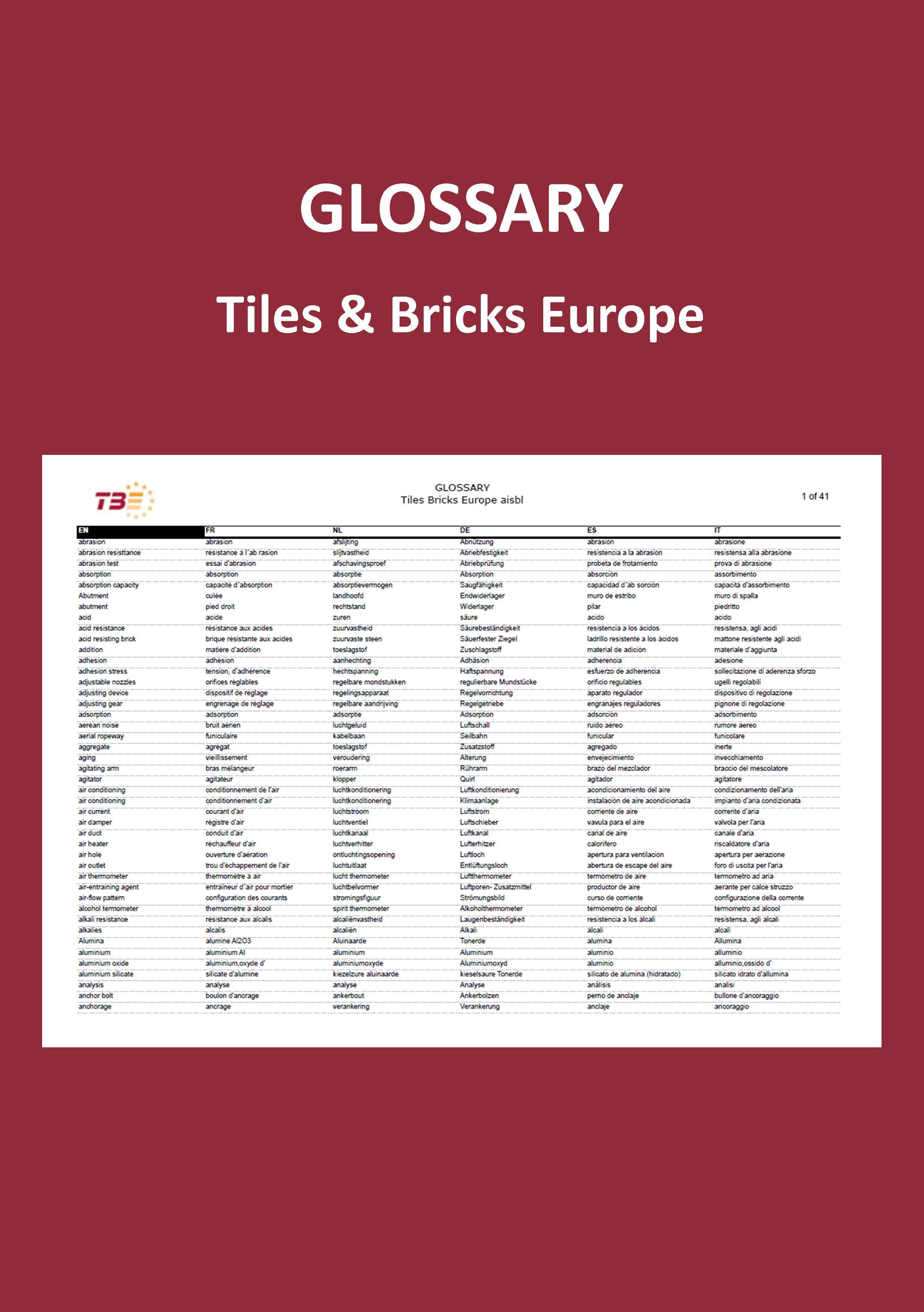 TBE Glossary (2008)