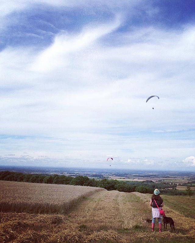 💙It's a nice day to go walk up a hill!! 💙 #100daysoflittledelights #yorkshirewolds #houndsandhills