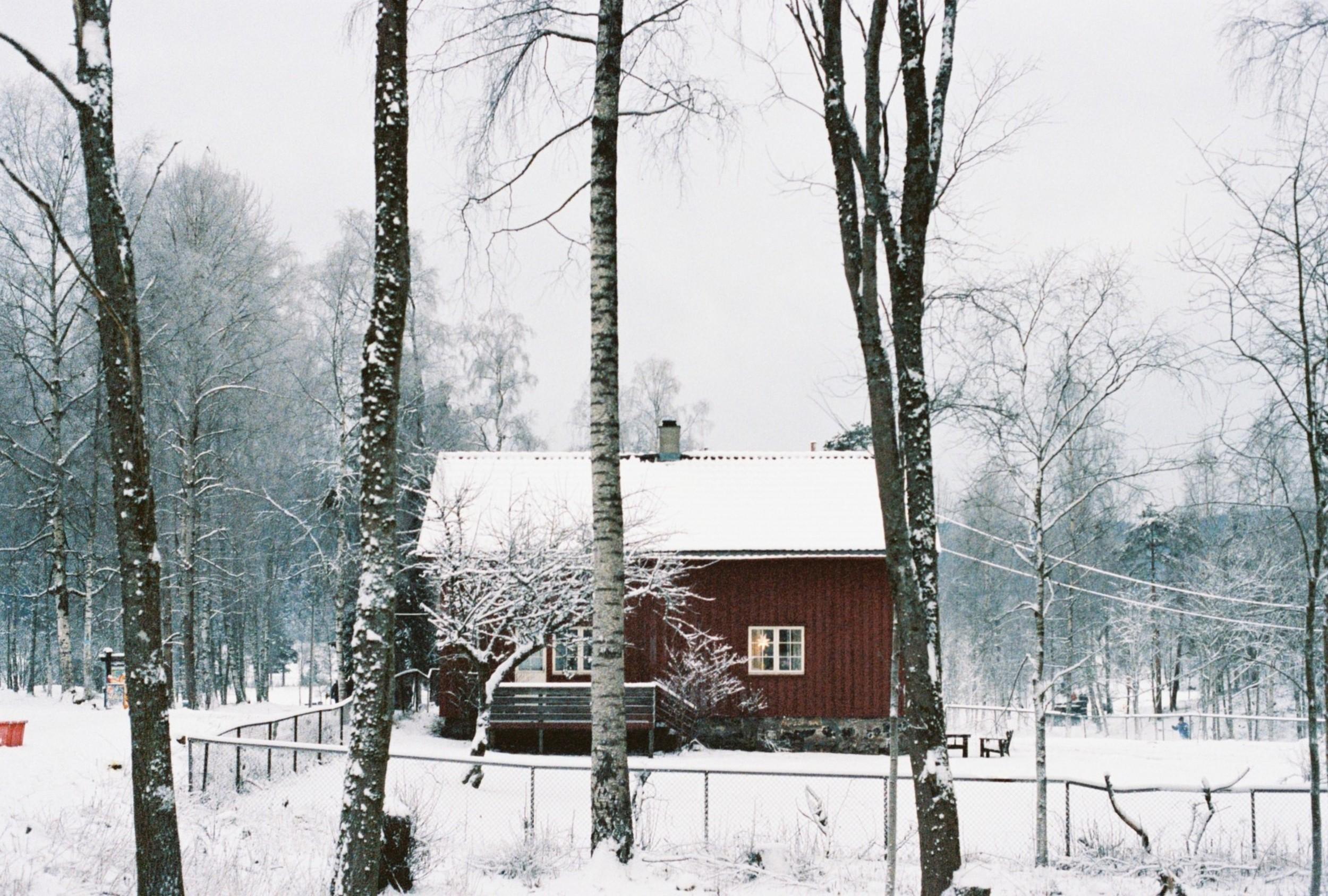 Vinterhagen07.jpg