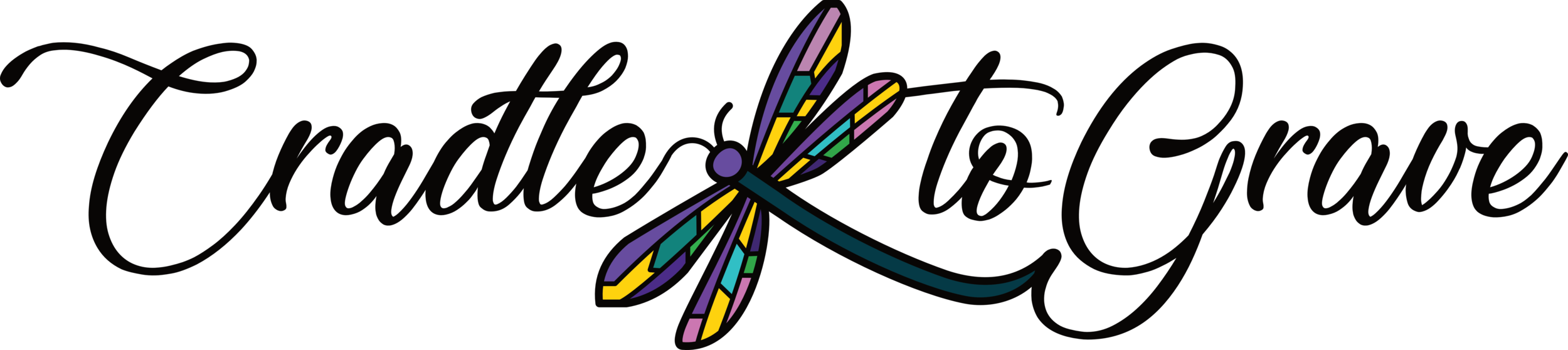 dragonfly logo 01 colour.png