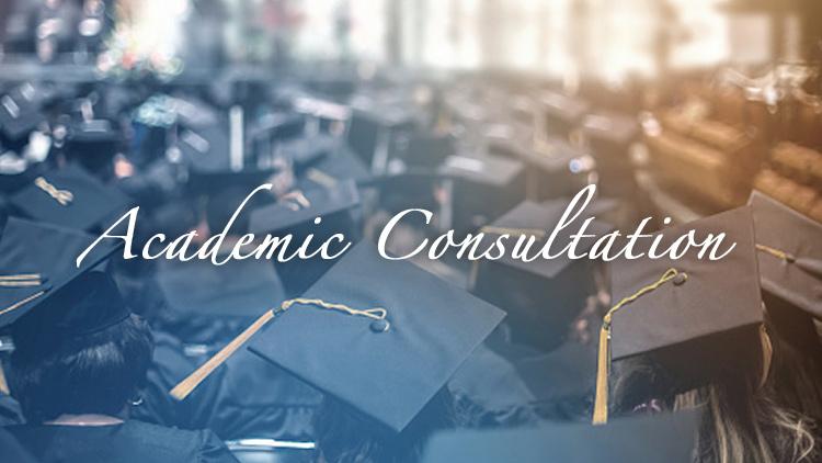 Academic Consultation