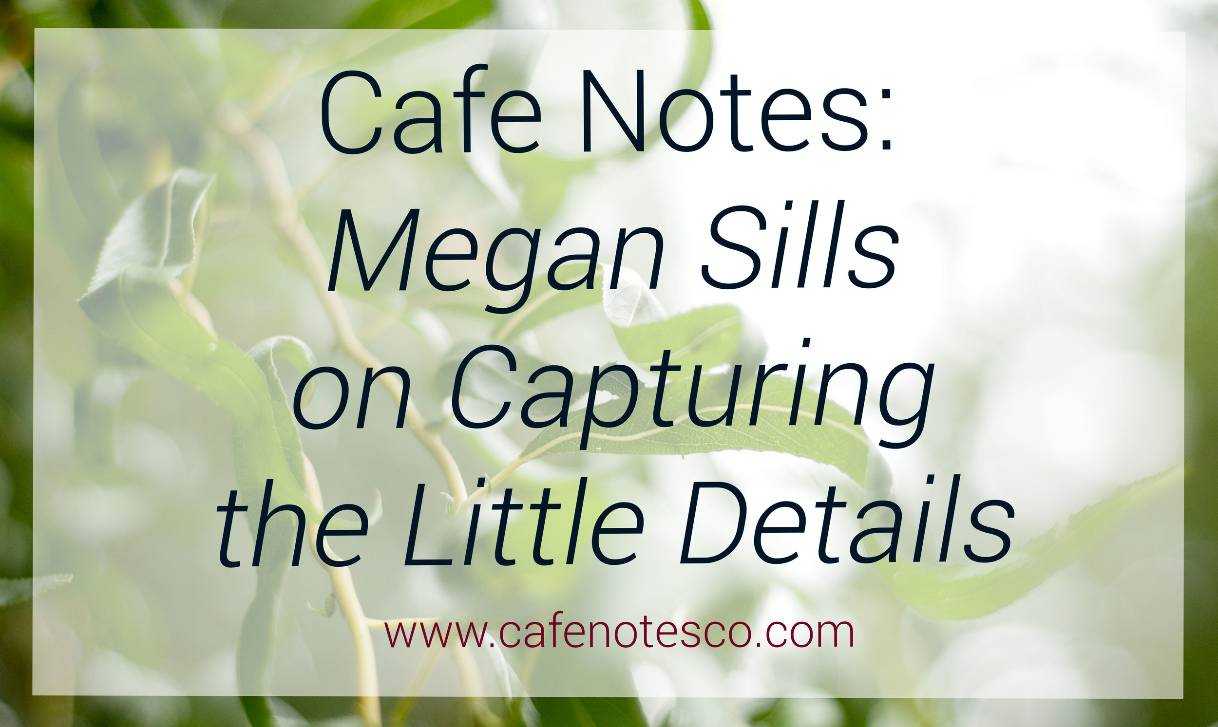 Cafe Notes + Company Megan Sills