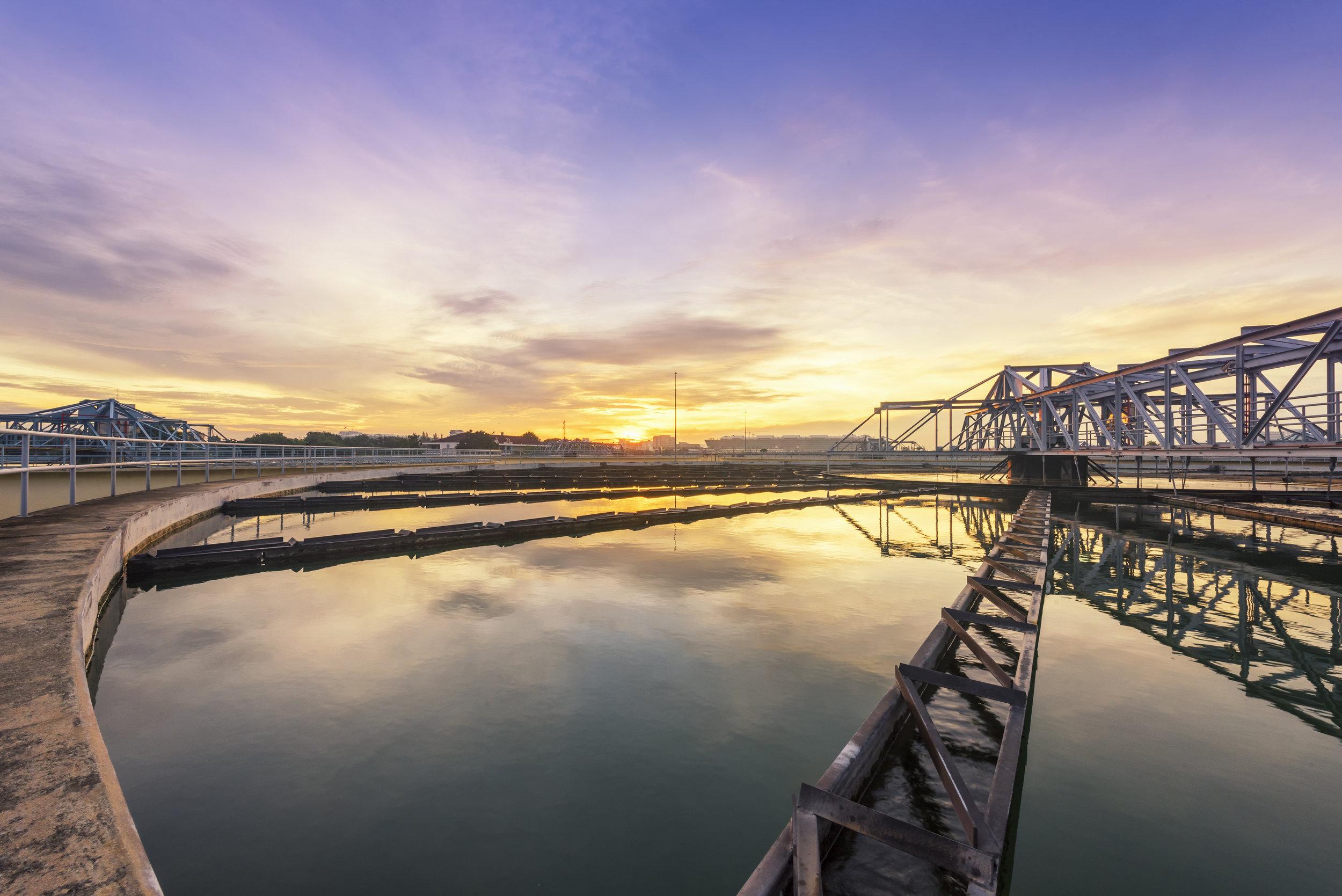 WTP - sunrise.jpg